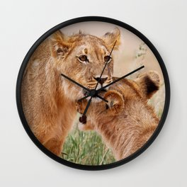 Two young lions - Africa wildlife Wall Clock