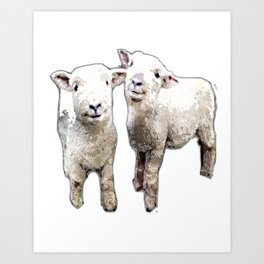 Two sheep bywhacky Art Print
