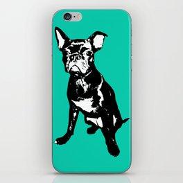 Bugg Dog iPhone Skin