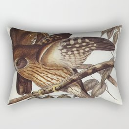 Boobook Owl (Athene boobook) illustrated by Elizabeth Gould (1804-1841) for John Goulds (1804-1881) Rectangular Pillow