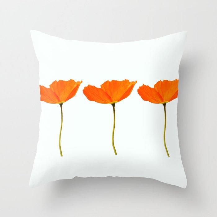 Three Orange Poppy Flowers White Background Throw Pillow By Pivivikstrm Society6