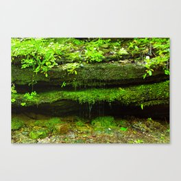 Fairy Home - Moss Covered Rock Waterfall Canvas Print