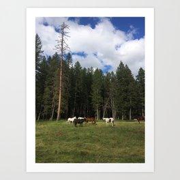 montana les chevaux Art Print
