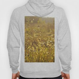 A Field at Golden Hour Hoody