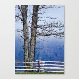 Parkway Tree Canvas Print
