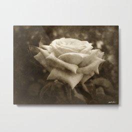 Pink Roses in Anzures 6 Antiqued Metal Print