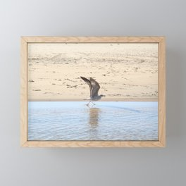 Seagull bird taking off Framed Mini Art Print