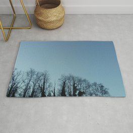 Fog and Forest- wood,mist,romantic, greenery,sunset,dawn,Landes forest,fantasy Rug