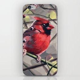 Norther Cardinal 6 iPhone Skin