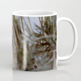 DRIED FLOWERS CLOSE UP Coffee Mug