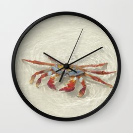 crab in the water Wall Clock