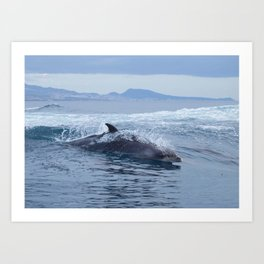 Dolphin: love for waves, love for life Art Print