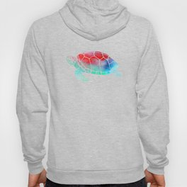 Watercolor Turtle Hoody