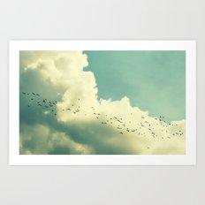 free birds Art Print