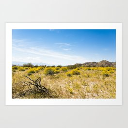 Super Bloom 7284 Paradise Joshua Tree Art Print
