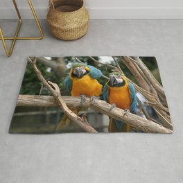 Blue And Gold Macaws Rug