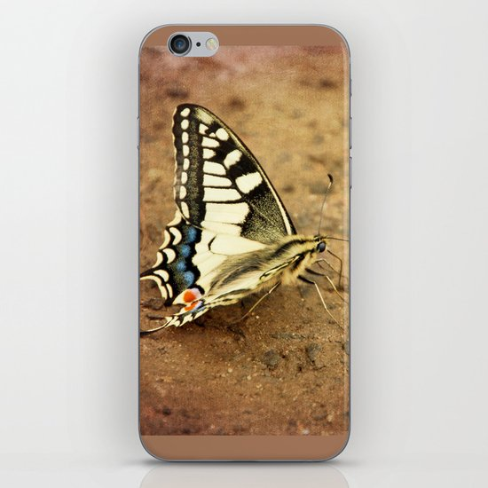 Swallowtail butterfly iPhone & iPod Skin