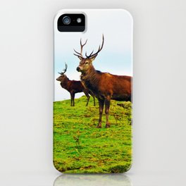 Stags on the hill iPhone Case