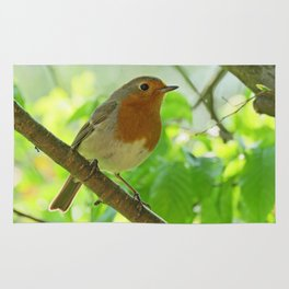 Robin in the bushes Rug