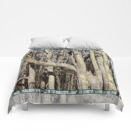 CROWDED GNARLED ASPEN TREES ON CRESCENT BEACH Comforters