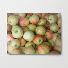 Jonagold Apples Metal Print