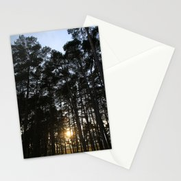 Translucent  Stationery Cards