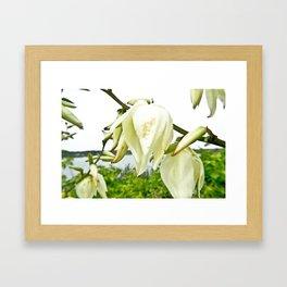 white-flowers Framed Art Print
