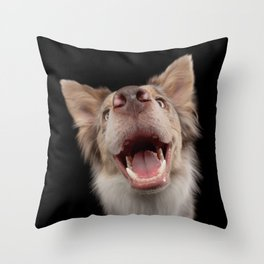 funny dog, distorted muzzle. breed border collie Throw Pillow