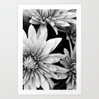 black and white flowers,.  Art Print