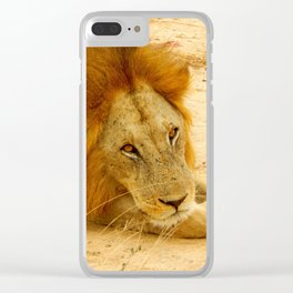 Lion's Eyes Clear iPhone Case