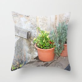 Pots of herbs against a stone wall Throw Pillow