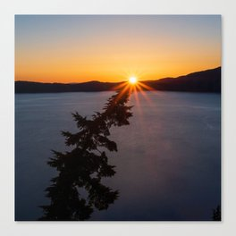 Sunset Tree Top Canvas Print