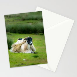 Wind sheared Sheep Stationery Cards