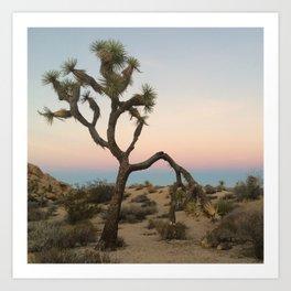 Desert Sunset Colors Art Print