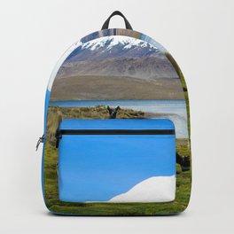 Chungara Lake, Chile Backpack