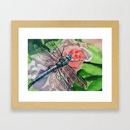 Dragonfly on Rose Framed Art Print