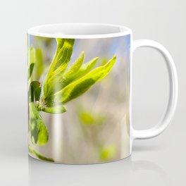 First Leaves of Spring Coffee Mug