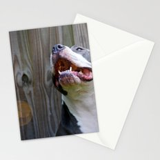 Pit-iful Smile Stationery Cards