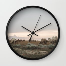 Tribe of Camels in the Kazakh desert Wall Clock