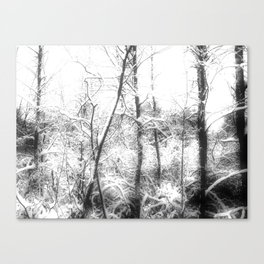 Spook in the Snow Canvas Print