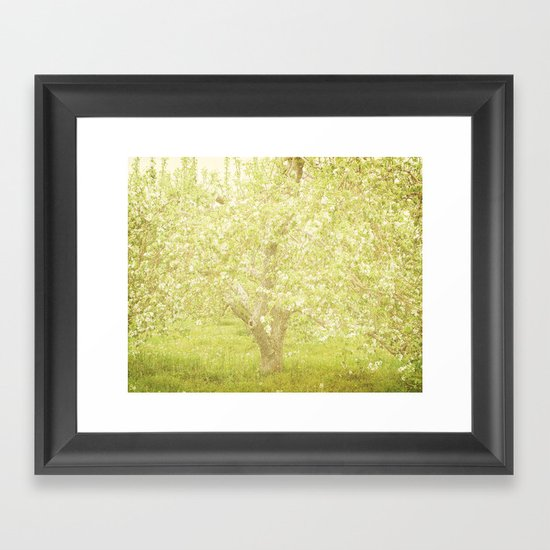 Cherry Tree Framed Art Print