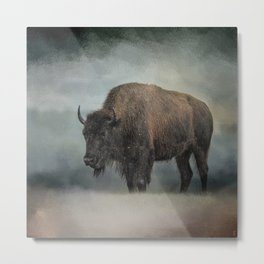 Stormy Day - Buffalo - Wildlife Metal Print