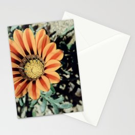 Flower in Recreation Area  Stationery Cards