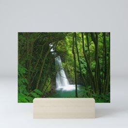 Waterfall in the Azores Mini Art Print