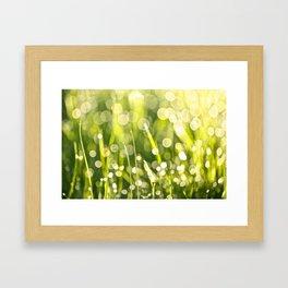 One Summer Morning Framed Art Print