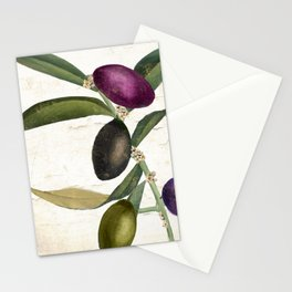 Olive Branch II Stationery Cards