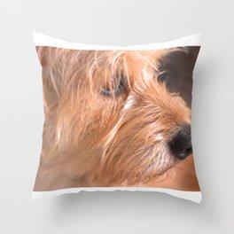 Doggy Throw Pillow
