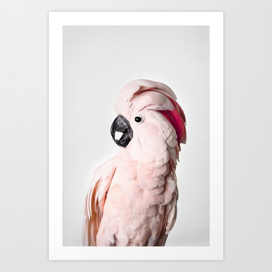 Pink Cockatoo by katypie