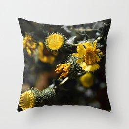 Cyclic Throw Pillow