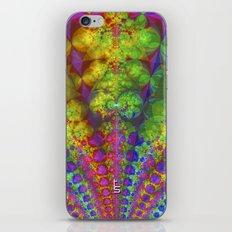 Fractal Fountain iPhone & iPod Skin